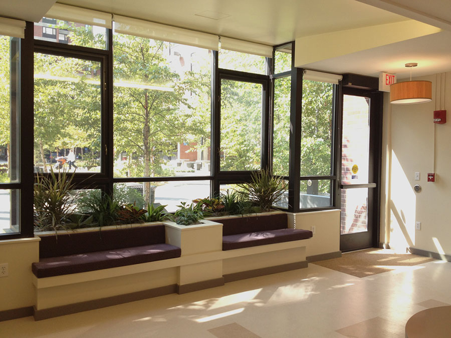 Large open windows with natural light and trees outside.