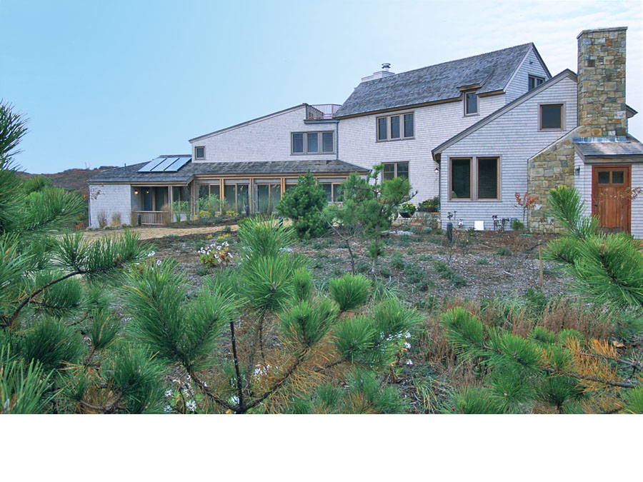 Sustainable landscape design at the Cape Cod house.