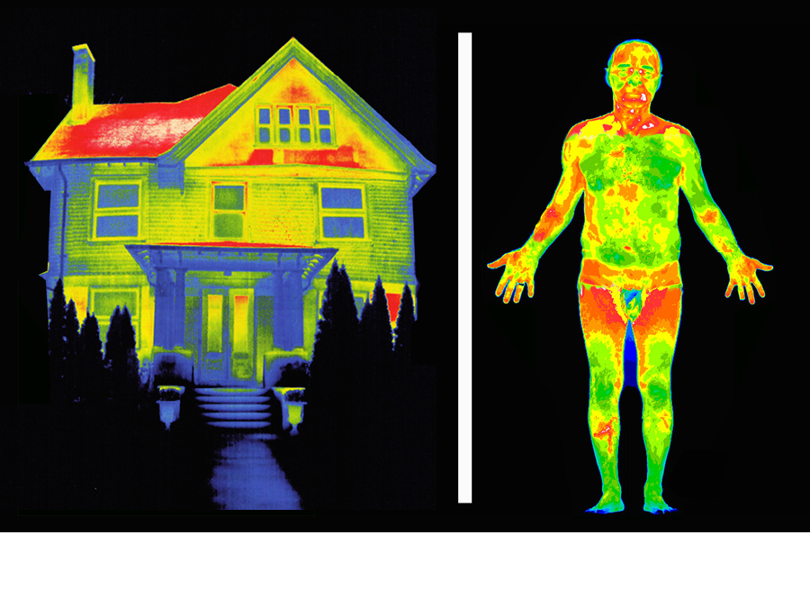 Thermal image comparison of home and body.