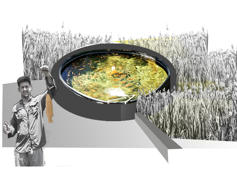 Fish farm concept for ReGen Boston.