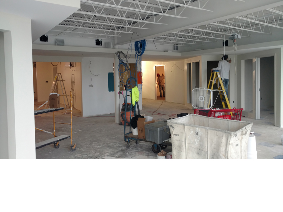 Painting and Finish work in a non-profit office fitout
