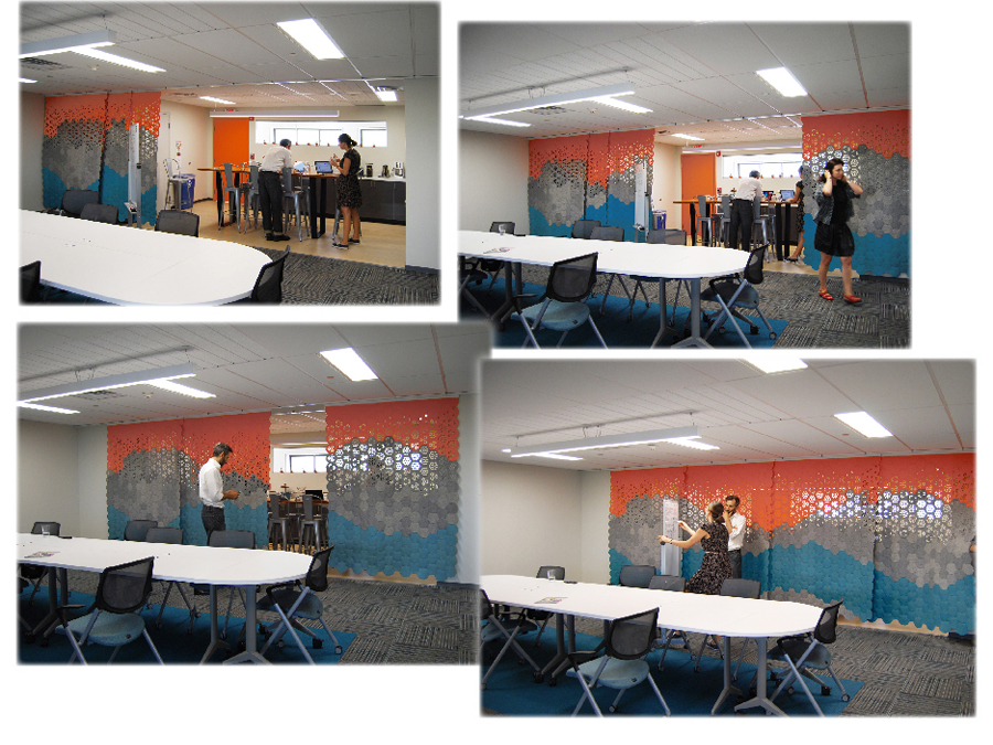 Filz Felt curtain in action at the Public Conversations Project offices